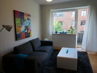 Nice Copenhagen apartment central at Frederiksberg - Copenhagen vacation rentals