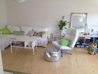 Child friendly Copenhagen apartment near Faelled Park - Copenhagen vacation rentals
