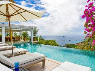 Blazing Oasis Villa offers lush tropical gardens and an infinity pool - Lurin vacation rentals