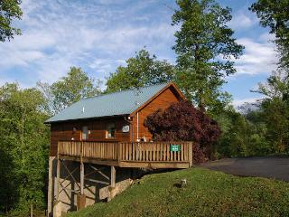 Above The Mist - Gatlinburg vacation rentals