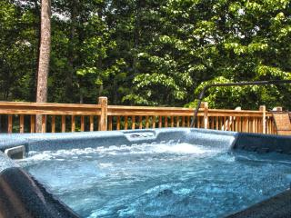 Up the Creek - Bryson City vacation rentals