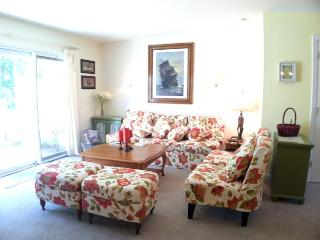 Ocean Edge - sleeps 6 with A/C & pool (fees apply) - HO0553 - Brewster vacation rentals