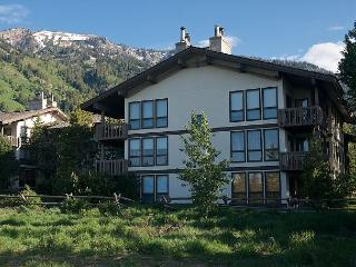 Sunny Ski Condo at the Base of Jackson Hole - Jackson vacation rentals
