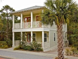 Monkey Business - Florida Panhandle vacation rentals