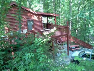 BRING YOUR ENTIRE FAMILY FOR ONLY $135 PER NIGHT!! - Bryson City vacation rentals