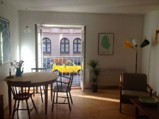 Lovely Copenhagen apartment very close to the lakes - Copenhagen vacation rentals