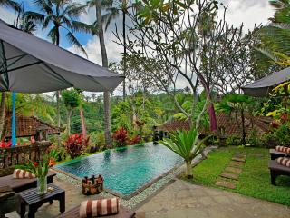 Mahogany Villa 2 bedroom valley view - UBUD - Ubud vacation rentals