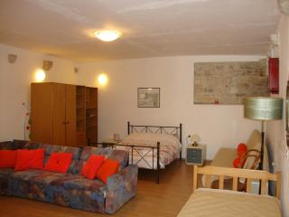 Center Huge Apartment - Split vacation rentals