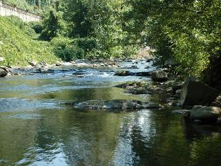 Gatlinburg riverside cabin - Sevierville vacation rentals
