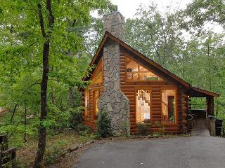 Cabin in between Gatlinburg and Pigeon Forge AFTERNOON DELIGHT #2332 - Sevierville vacation rentals