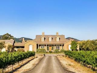 Elegant wine country Villa Carneros with vineyard views, pool, jacuzzi & outdoor fireplace - Sonoma vacation rentals