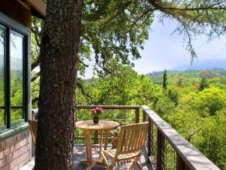 Secluded wine country Tree House with pool offers a tranquil setting in harmony with nature - California Wine Country vacation rentals