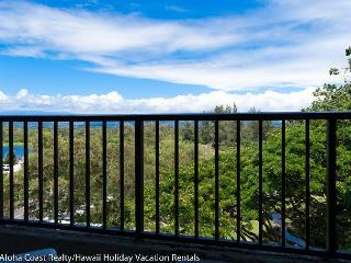 Recreation Surrounds Maunaloa Shores (MLS501) - Hilo vacation rentals