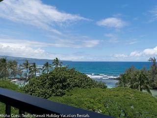 Mauna Loa Shores Penthouse on Hilo Bay (MLS703) - Hilo vacation rentals