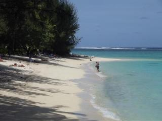 Rarotonga In The Beautiful South Pacific - Arorangi vacation rentals