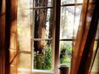 Affordable, Adorable Cabin. Come, Play, Stay! - Crestline vacation rentals