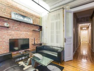 3BR★3BA★ISTIKLAL ST★DESIGN★HIGH CEILINGS! - Istanbul vacation rentals