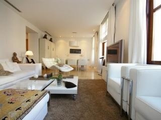 The Vinatea Apartment - Valencia vacation rentals