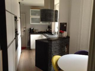 Newly renovated Copenhagen apartment with front yard - Copenhagen vacation rentals