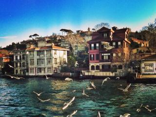 Cute & silent house on Bosphorus - Istanbul vacation rentals