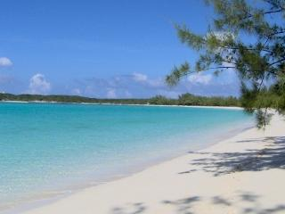 STUDIO APARTMENT for 2 and DIRECTLY on BEST BEACH - George Town vacation rentals