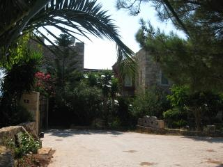 Private Estate, Villa with Pool, fully staffed. - Chania vacation rentals
