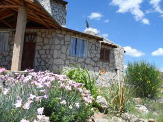 Comfortable cabin in the mountains - Cuyo vacation rentals