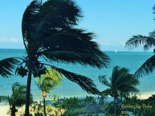 On The Ocean - Key Biscayne - Miami - Key Biscayne vacation rentals