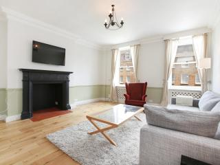 49. 1BR - Marble Arch - Oxford Street - Hyde Park - 5th Arrondissement Panthéon vacation rentals