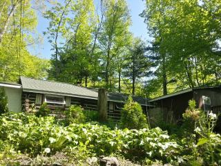 Painted Fern- Classic Log Cabin w modern amenities - Dingmans Ferry vacation rentals