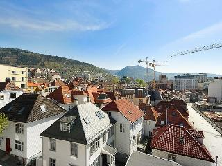 Great view central in Bergen - Western Fjords vacation rentals