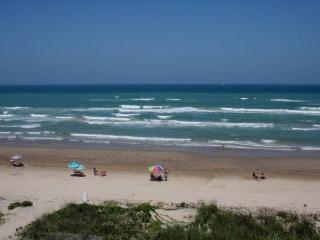 BEACHFRONT STUDIO! awesome deal! Super NICE! WI-FI, FREE night with 6 nights! Just updated! - South Padre Island vacation rentals