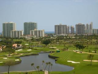 beautiful apartment in front of the aventura Mall - Aventura vacation rentals