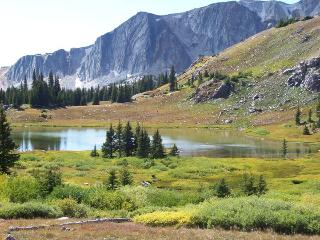 Stay cool at 8,500 ft. this summer in the Rockies - Centennial vacation rentals