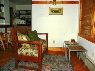 Garden Cottage~Walk to town~On Appalachian Trail - Hot Springs vacation rentals