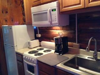 Cabin Rental-2 people up to Family Reunions! - Lake Luzerne vacation rentals