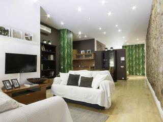 Gracia Loft - Barcelona vacation rentals