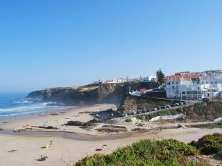Apt. on the Beach with roof top Zambujeira do Mar - Centro Region vacation rentals