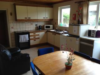 Moyola Park - County Galway vacation rentals