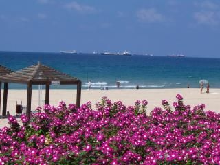 We Are Ashdod Casual - Ashdod vacation rentals