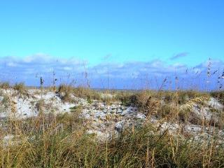2br Ocean Front Home In St.augustine Beach Fl - New York City vacation rentals