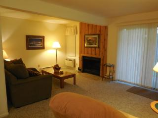 Dells Club Condo (Walnut5)+ Chula Vista Water Park - Wisconsin Dells Region vacation rentals