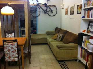 A Charming studio apartment in Talbieh - Jerusalem vacation rentals