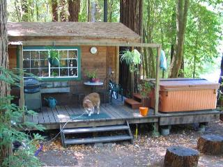 EDGEWATER CABIN - Russian River vacation rentals