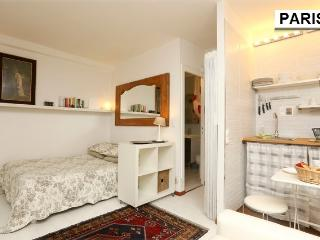 DISCOUNT for LAST MIN: darling studio in le marais - Paris vacation rentals