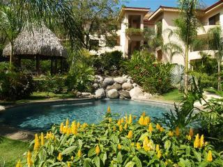 Gardens surrounding the pool - Serena Suites 2 bedroom beach condos in Costa Rica - Playa Ocotal - rentals