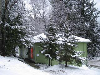 Lovely Cottage in the Green Mountains - Northfield vacation rentals