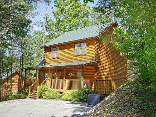 Gatlinburg 2 bedroom cabin updated with Arcade game and WIFI  access #422 - Sevierville vacation rentals