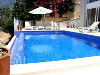 LUXURY VILLA WITH STUNNING VIEWS AND PRIVATE POOL - Kalkan vacation rentals