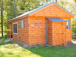 Blue Moon - One Room Cabin - Taberg vacation rentals
